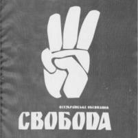 """Національний Альянс та """"Свобода"""" обговорили можливості співпраці"""