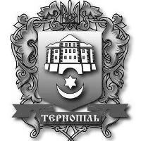 Тернопіль. Політичні висновки
